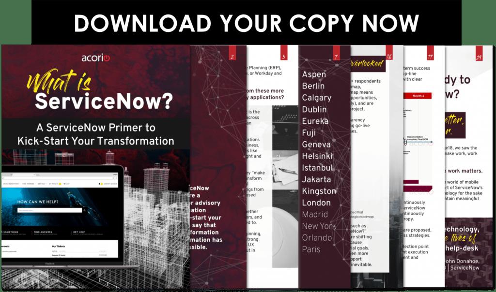 ServiceNow Primer eBook preivew