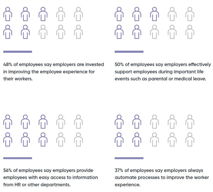 Employee Survey responses graph
